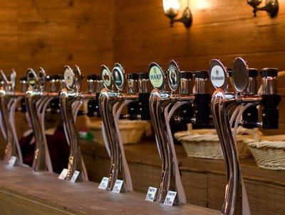 Бизнес идея: Продажа живого пива