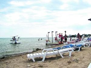 Бизнес идея: Как обустроить пляж