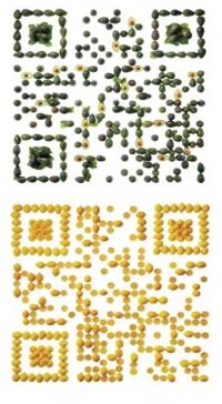 Съедобные QR-коды