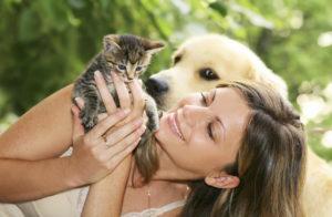 Общение с животными для снятия стресса