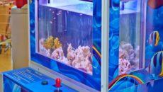 Вендинговый аппарат «Fish&Wish» — это уникальный аттракцион, сюжетом которого, является ловля аквариумных рыбок
